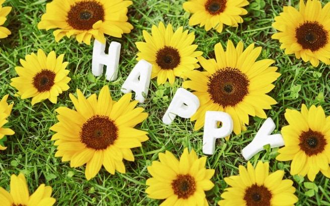 Hạnh phúc ở quanh ta
