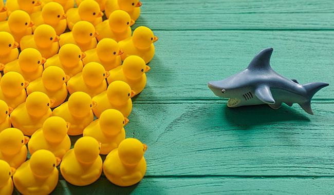 Làm thế nào để đối diện với sự khắc nghiệt của người khác?