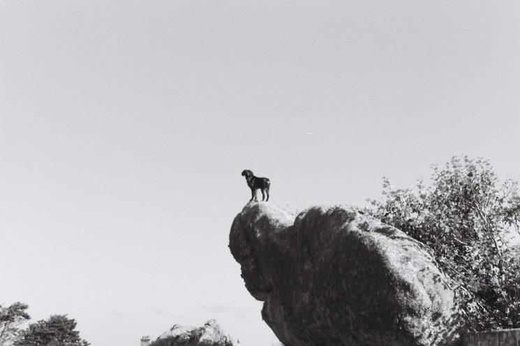 Tâm trạng cô đơn: nguyên do của nhiều bất hạnh