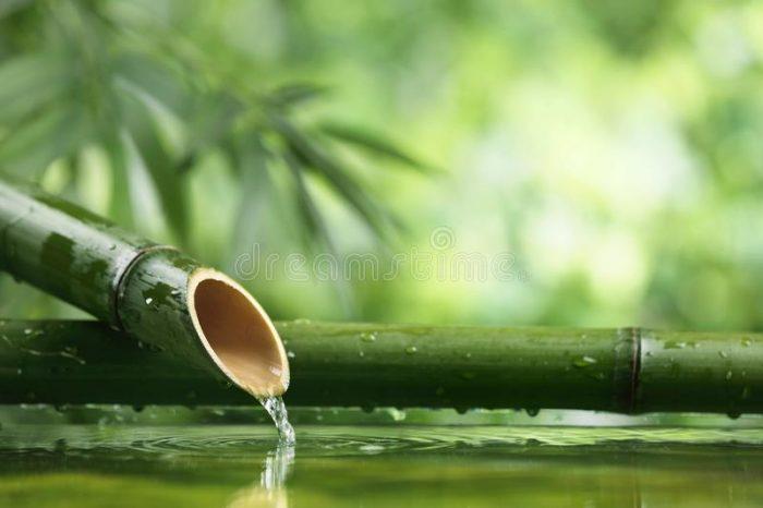 Đời sống nội tâm là dòng nước chúng ta thường ít lui tới