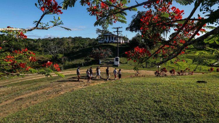 Các Giám mục Brazil giới thiệu Chương trình truyền giáo quốc gia