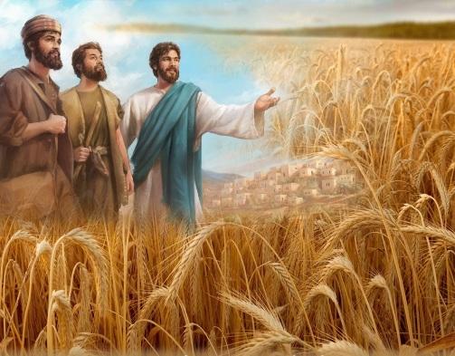 Về sứ mạng truyền giáo của người Kitô hữu