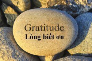 Lòng biết ơn, nhiên liệu thiết yếu của đời sống vợ chồng