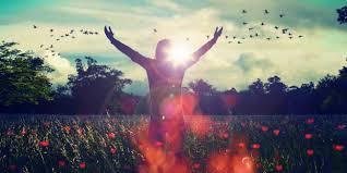 Những điều mang lại cuộc sống hạnh phúc  một cái nhìn chung giữa khoa học  và lời dạy của Chúa Giêsu