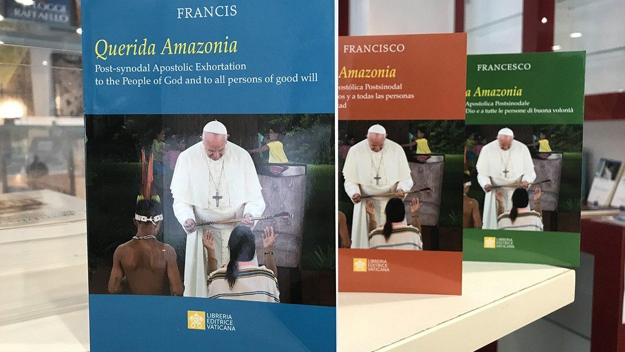 Tông Huấn mới của ĐTC và Công nghị Giáo Hội Công Giáo Đức