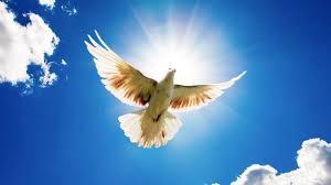 Lạy Chúa Thánh Thần, xin Ngài ngự đến