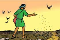 Tâm sự của người đi gieo