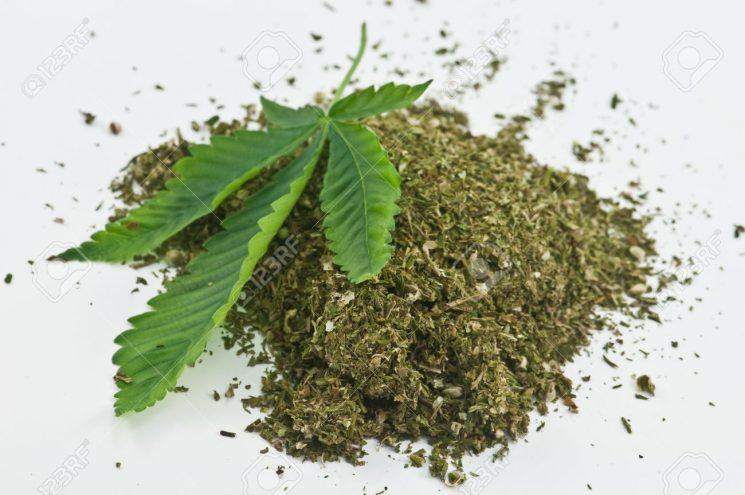 Con tuổi vị thành niên của tôi hút cannabis: Tôi phải làm gì bây giờ?