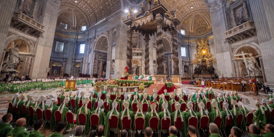 Thượng hội đồng trong Giáo Hội Công Giáo là gì?