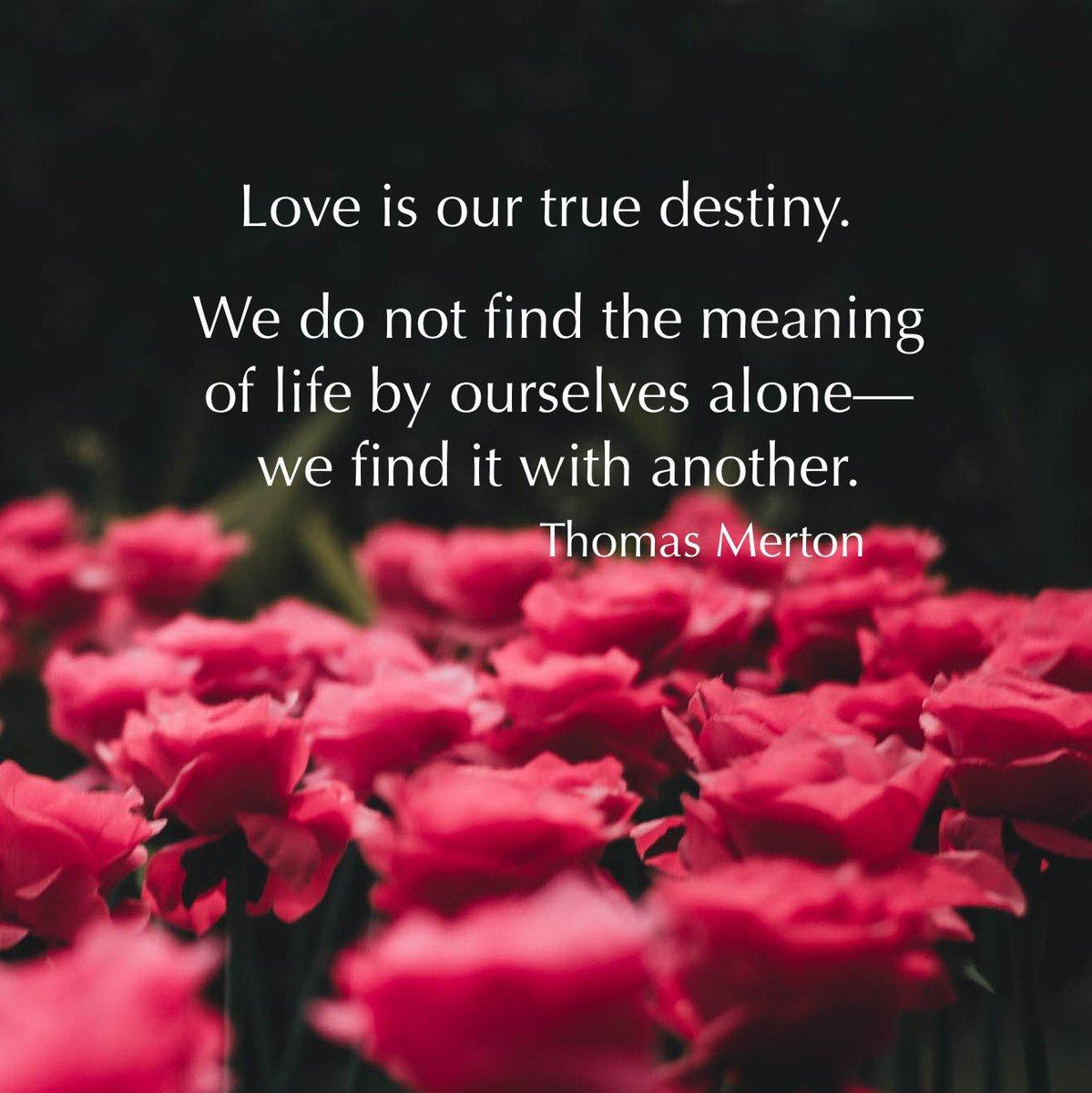 Bạn đang tìm kiếm Tình Yêu? Đây là 7 gợi ý từ Thomas Merton