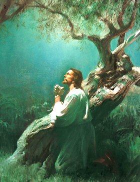 Bản Xét Mình Xưng Tội theo 10 Điều Răn
