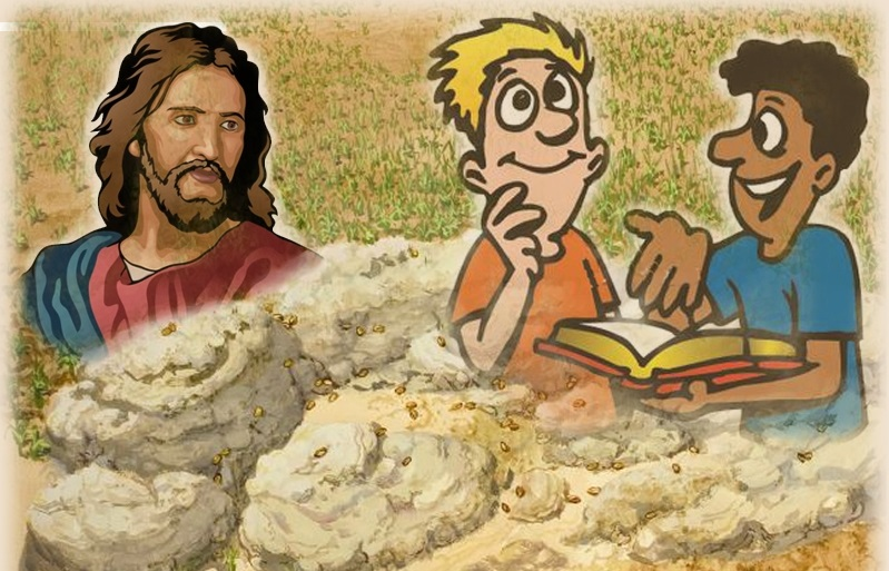 Biết bao bạn trẻ vẫn khao khát tìm Chúa