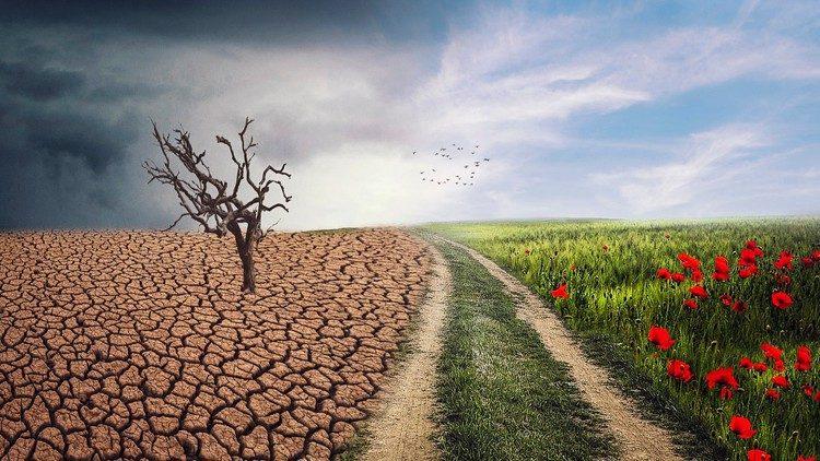 Caritas Quốc tế: Hệ sinh thái toàn diện là giải pháp cho khủng hoảng khí hậu