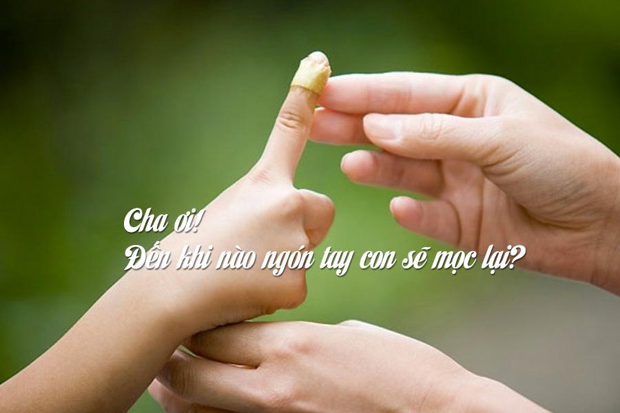 Cha ơi, đến khi nào thì ngón tay con sẽ mọc lại