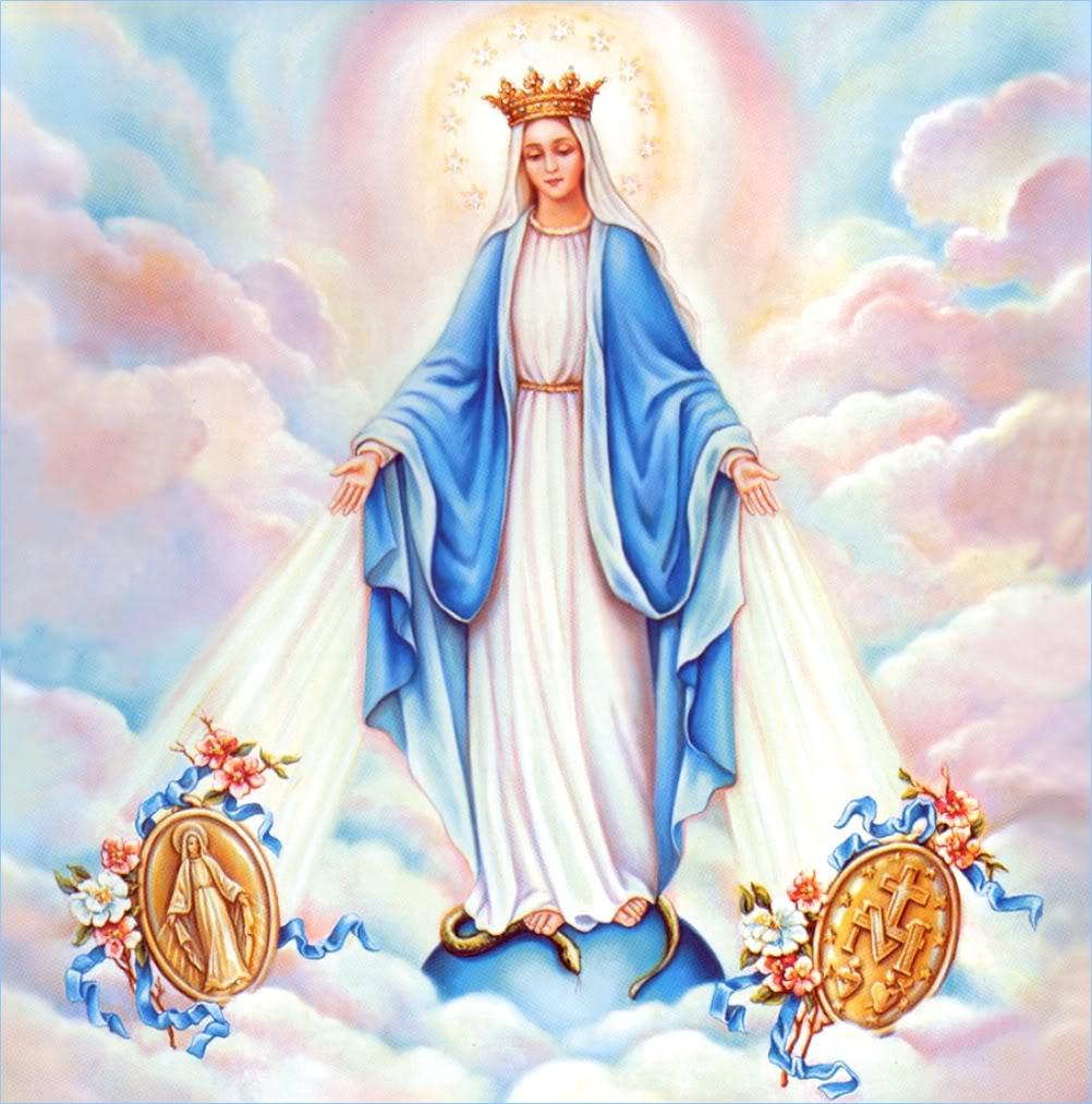 chứng Đức Mẹ Vô Nhiễm Nguyên Tội