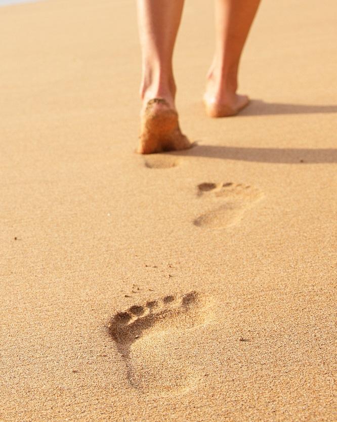 Con đường nào in dấu chân tôi?