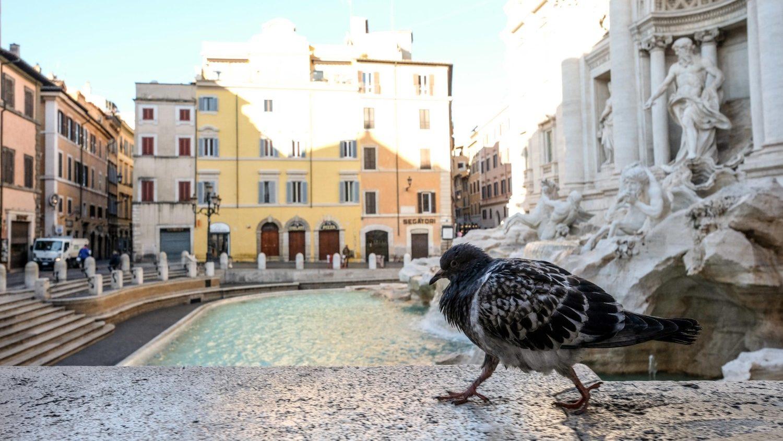 ĐTC giúp tổ chức Bác ái của Ý 100 ngàn euro trong đạị dịch virus corona