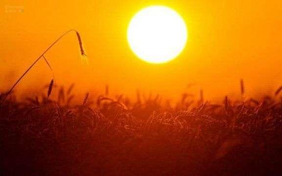 Dụ ngôn Mặt trời hay làm thế nào để giải thích Chúa Ba Ngôi?