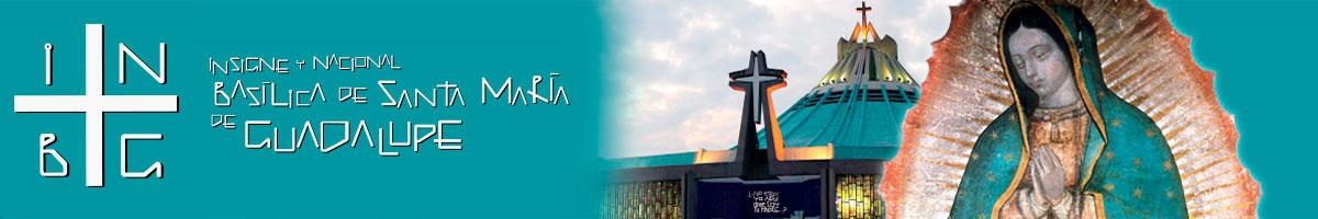 Đức Mẹ Guadalupe chấp nhận lời cầu nguyện trực tuyến