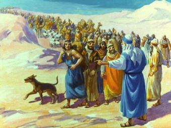 Hướng tới một nền Thần học Di dân