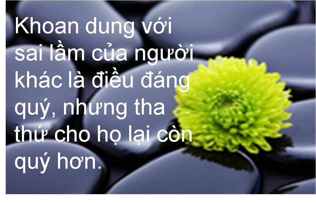Khoan dung với sai lầm của người khác là điều đáng quý...