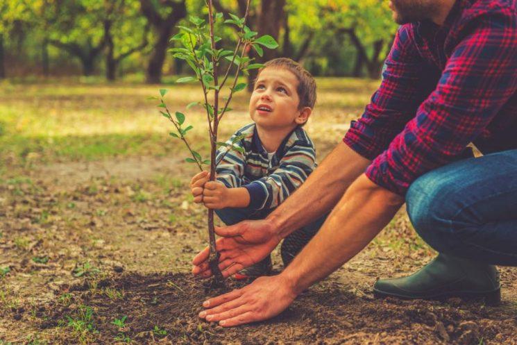 Năm lời khuyên để giúp con cái có một ý chí vững mạnh