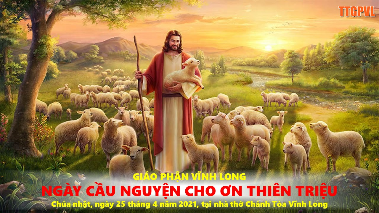 ngay-cau-cho-on-thien-trieu-2542021
