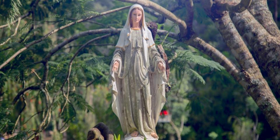 Lời cầu nguyện với Đức Maria giúp người Kitô hữu luôn bám chặt vào chân lý