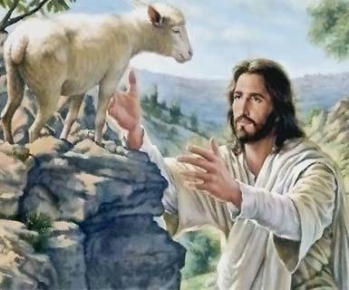 Suy niệm Tin Mừng Chúa nhật 4 Phục Sinh - Năm A