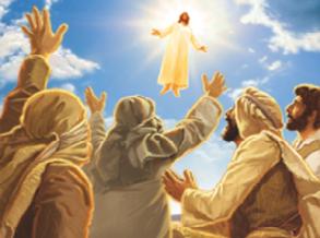Suy niệm Tin Mừng Lễ Chúa Thăng Thiên - Năm A