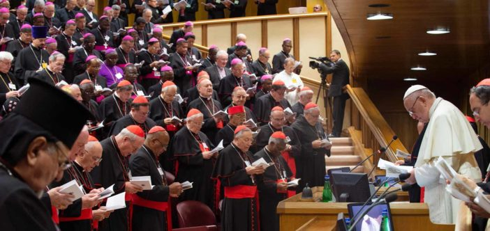 Tài liệu đúc kết của Thượng Hội đồng về Giới trẻ, Đức tin và Sự Phân định ơn gọi - 1