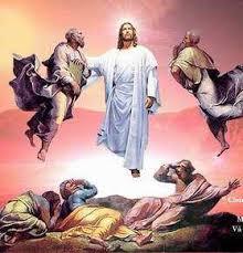 Tầm nhìn của lãnh đạo Mục vụ: Lên núi với Chúa - tt
