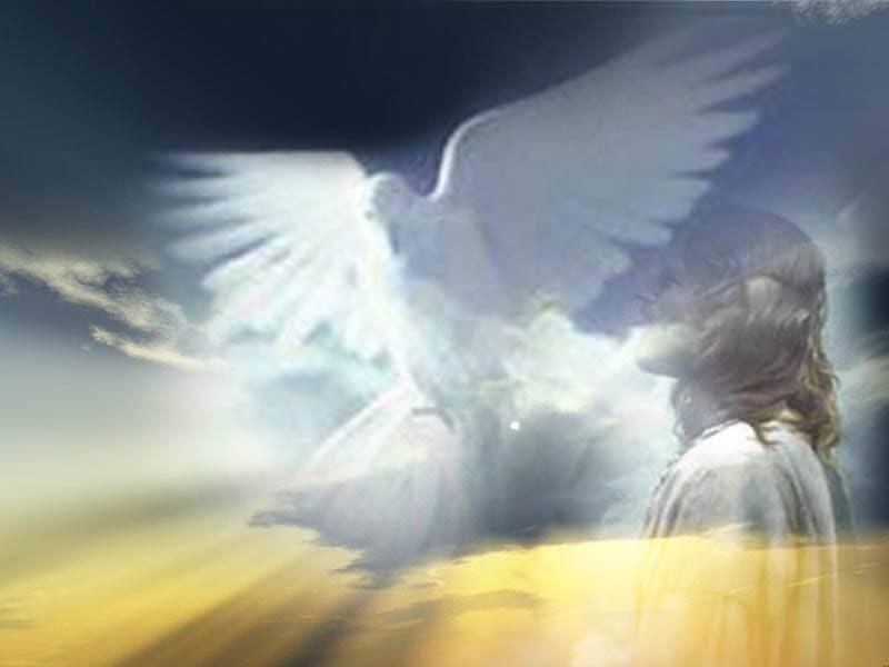 Thần Khí Đức Kitô Được ban cho Hội Thánh 'Chủ đích của Thần khí' (1)