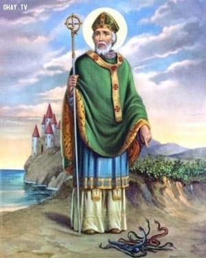Thánh Patrice - Giám mục