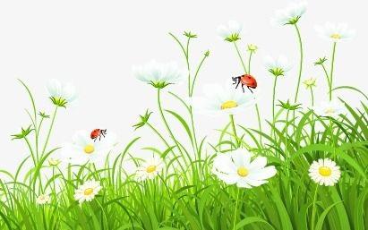 Tin rằng bạn đã đạt đến sự không thể phá hủy, để được giải thoát, để không thể bị phá hủy, để hiện hữu