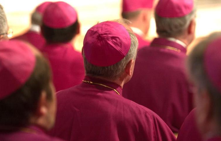 Tòa Thánh nói tiến trình công nghị