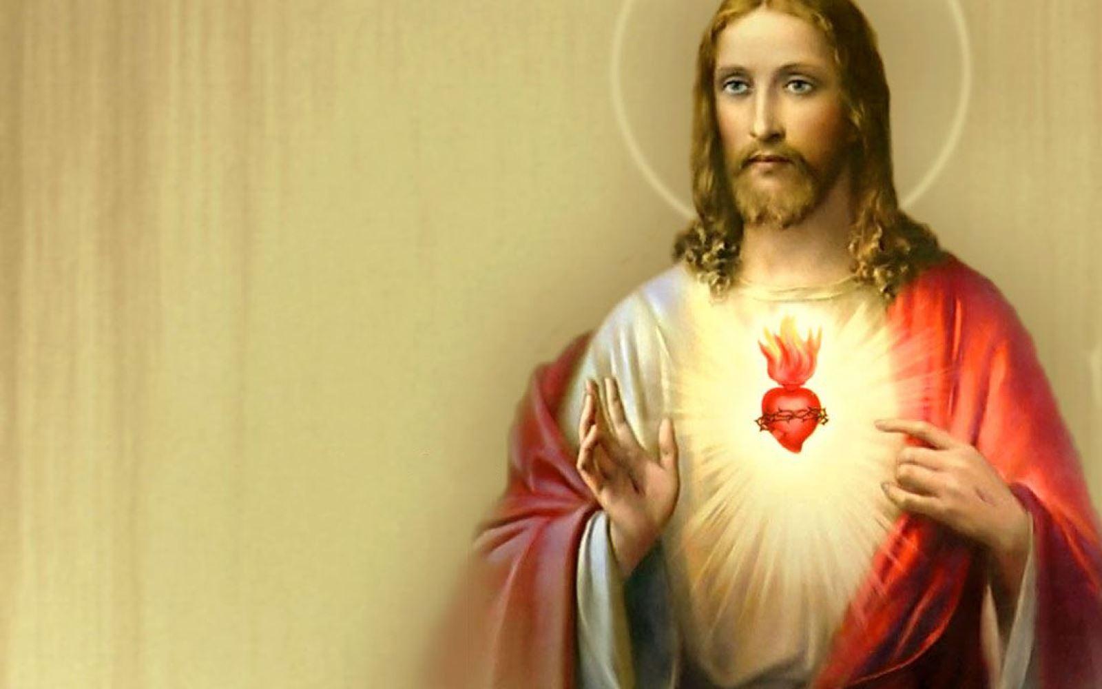 """""""Trái Tim đức Chúa giêsu là cội rễ cho chúng con được nên lành nên thánh"""""""