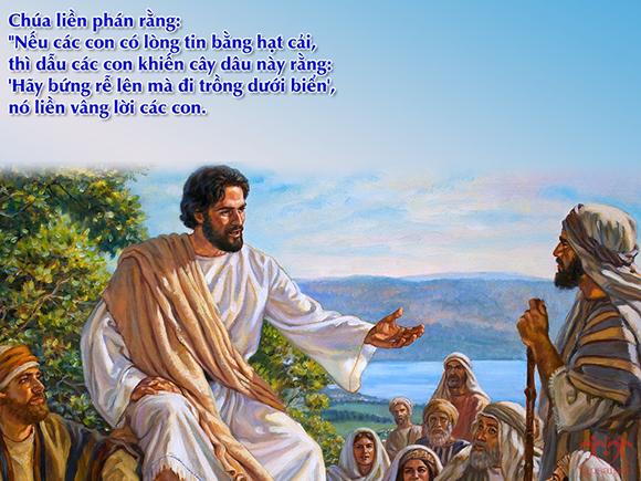 Lời nguyện tín hữu - Chúa nhật XXVII Thường Niên - Năm C